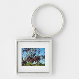 Fell Foliage Keychain