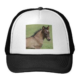 Fell Pony Foal Sapphire Trucker Hat