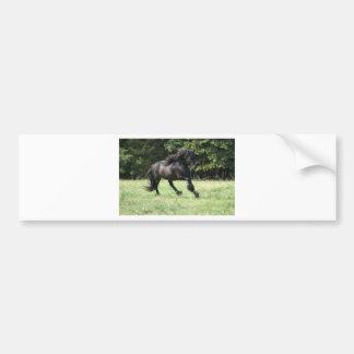 Fell Pony Stallion Bumper Sticker