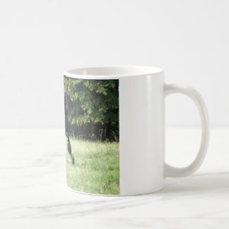 Fell Pony Stallion Classic White Coffee Mug