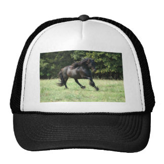 Fell Pony Stallion Trucker Hat