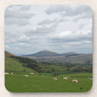 fell view phone cover drink coaster