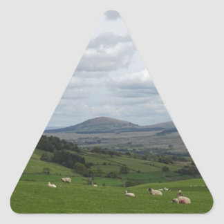 fell view phone cover triangle sticker