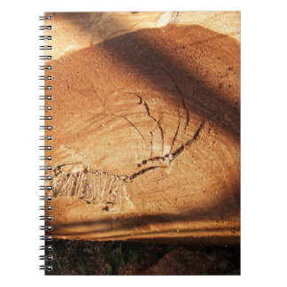 Felled tree trunk close-up spiral notebook