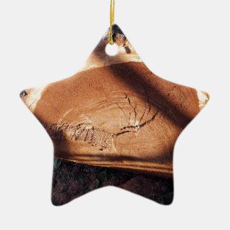 Felled tree trunk closeup ceramic ornament