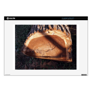 """Felled tree trunk closeup decal for 15"""" laptop"""