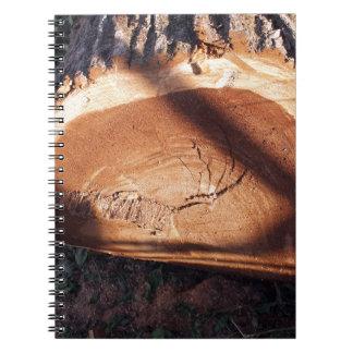 Felled tree trunk closeup spiral notebook
