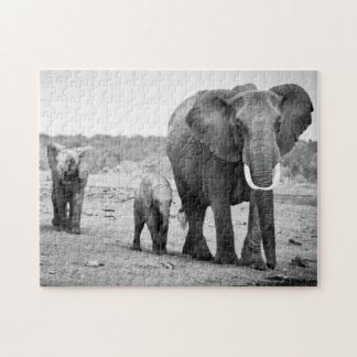 Female African elephant and three calves, Kenya. Jigsaw Puzzle