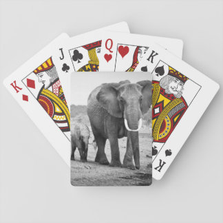 Female African elephant and three calves, Kenya. Poker Deck