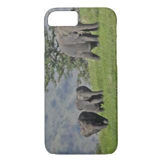 Female African Elephant with baby, Loxodonta 2 iPhone 7 Case
