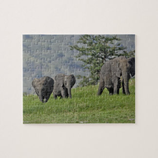 Female African Elephant with baby, Loxodonta 2 Puzzle