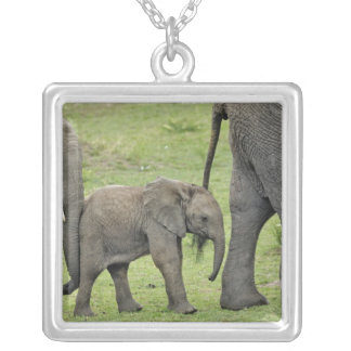 Female African Elephant with baby, Loxodonta 3 Square Pendant Necklace