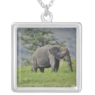Female African Elephant with baby, Loxodonta Square Pendant Necklace