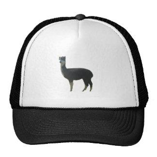 Female alpaca trucker hat