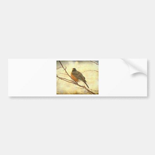 Female American Robin Bumper Sticker