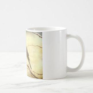 Female American Robin Coffee Mug