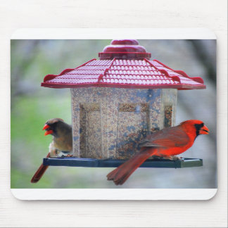 Female and Male Cardinals at Bird Feeder Mousepad