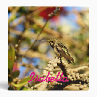 Female Anna's Hummingbird, California, Photo Binder