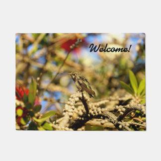 Female Anna's Hummingbird, California, Photo Doormat