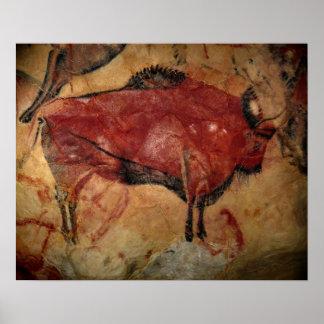 Female bison at Altamira Poster