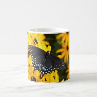 Female Black Swallowtail Butterfly mug