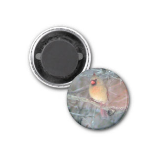 Female Cardinal 1 Inch Round Magnet