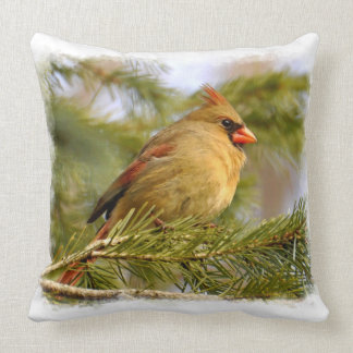 Female Cardinal 1A Pillows