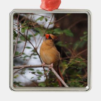 Female Cardinal 5 Metal Ornament