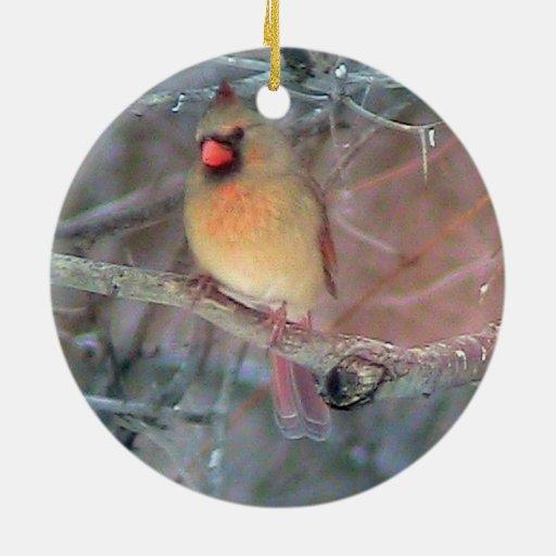 Zazzle Female Cardinal Christmas Ornament