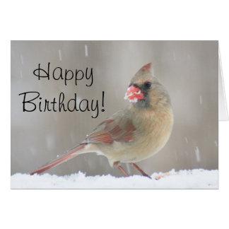 Female cardinal photo card