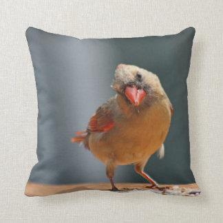 Female cardinal photo pillow