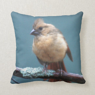 Female cardinal photo throw pillow