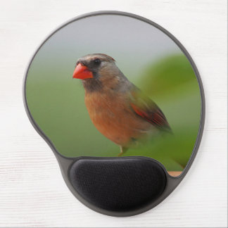Female cardinal photography gel mouse pad