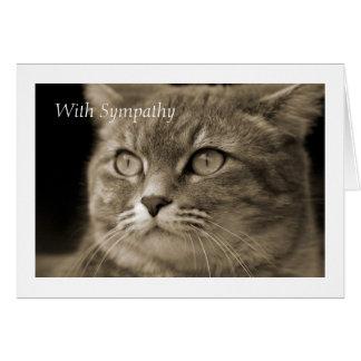 Female Cat Sympathy Card