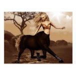 Female Centaur  Postcard