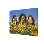 Female cheerleaders lying on grass with pompoms canvas print