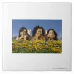Female cheerleaders lying on grass with pompoms ceramic tile