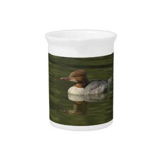 Female Common Merganser red headed sea duck Pitcher