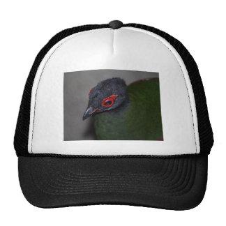 female crested wood partridge trucker hat