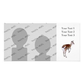 Female Deer. Card
