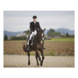 female dressage rider exercising posters