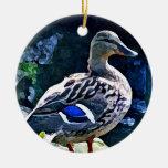 Female Duck Keeping an Eye on You Ornaments