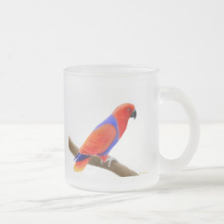 Female Eclectus Parrot Frosted Glass Mug