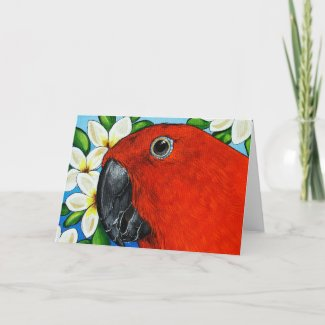 Female Eclectus Parrot Greeting Card zazzle_card