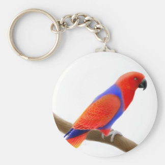 Female Eclectus Parrot Keychain