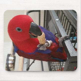 Female Eclectus Parrot Mouse Pad! Mouse Pad