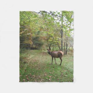 Female Elk in autumn field Fleece Blanket