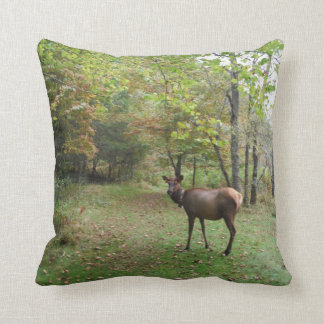 Female Elk in autumn field Pillow