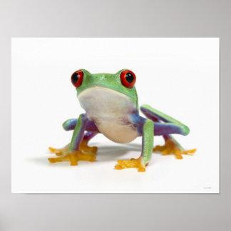 Female frog 2 print