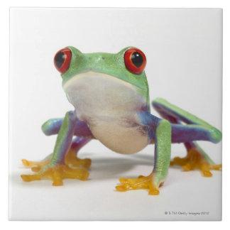 Female frog 2 tiles